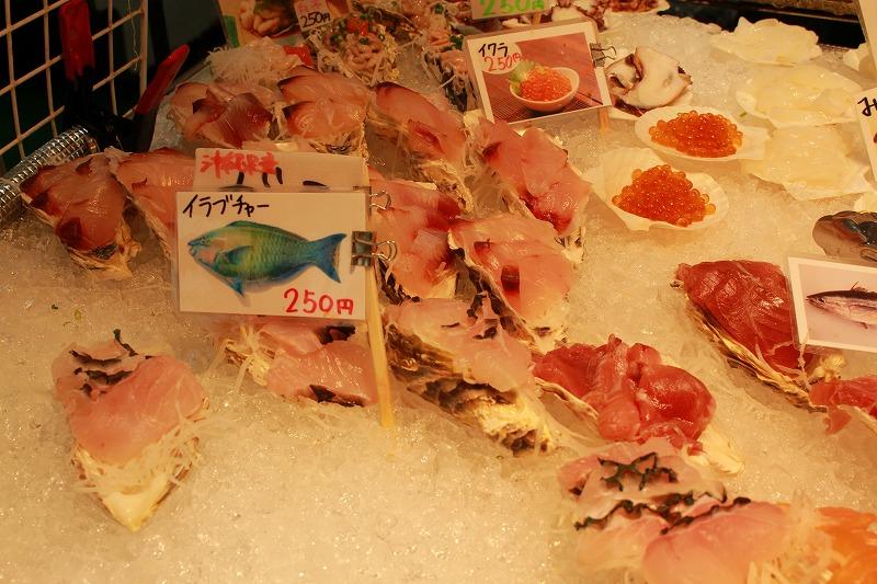 お魚センターのお魚たち