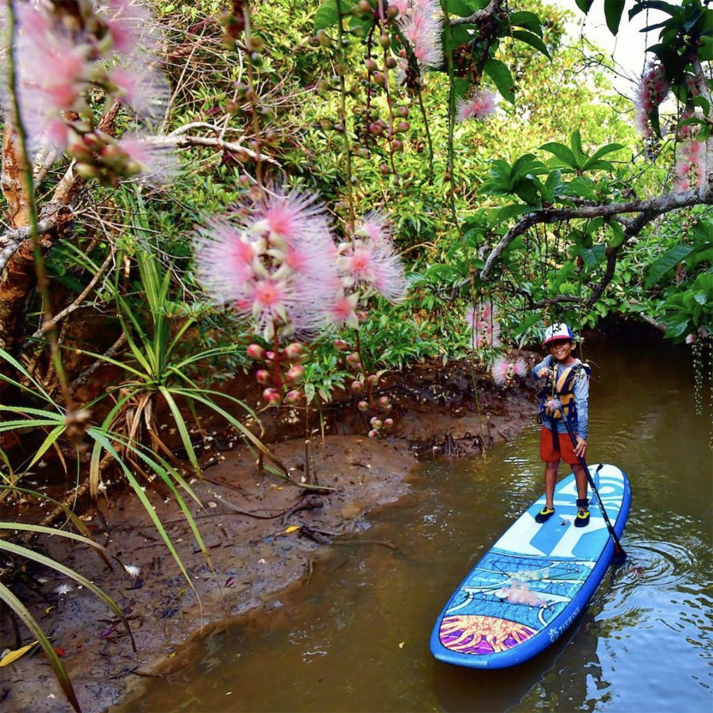 川とサガリバナ