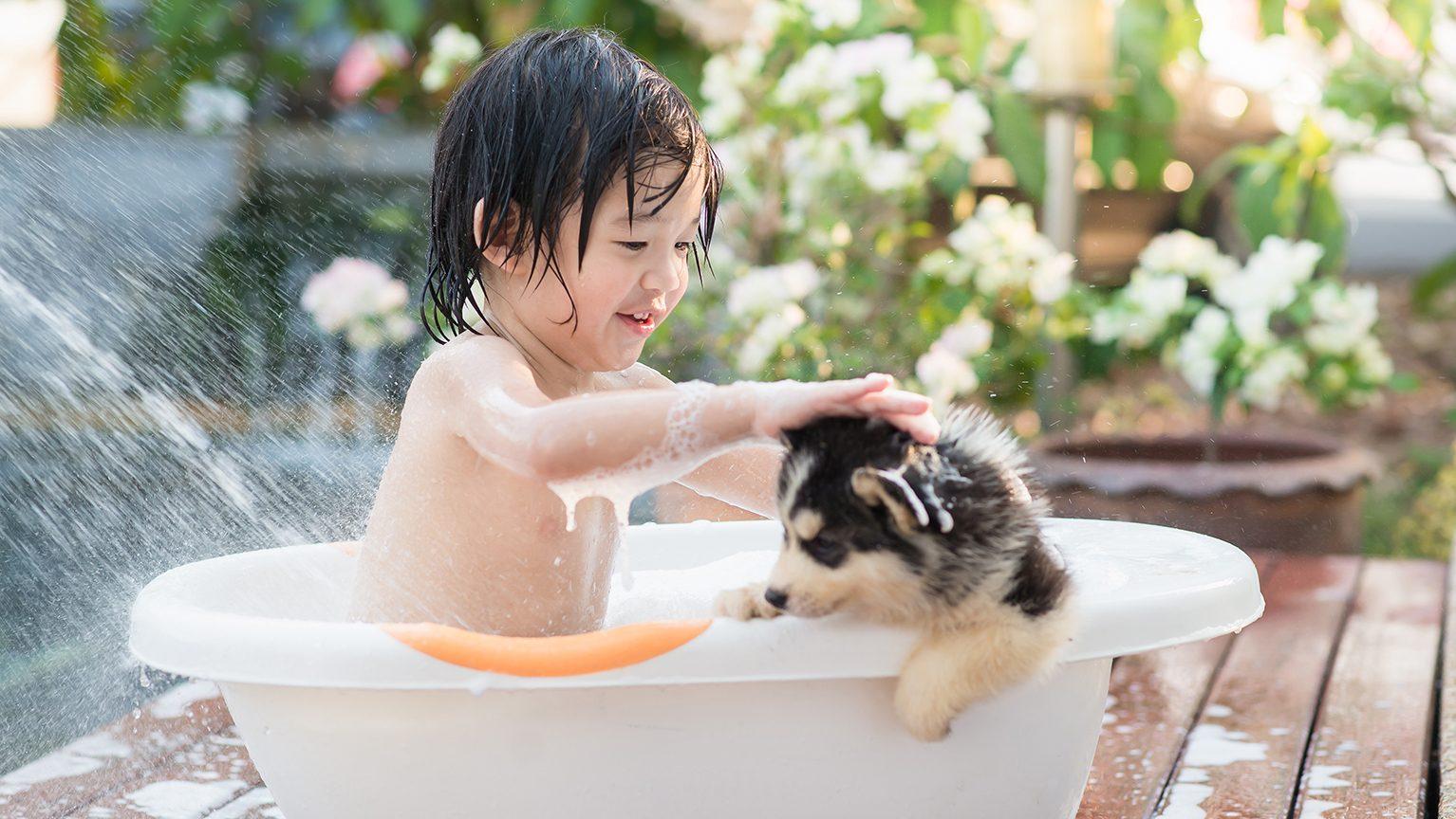 犬とお風呂に入る男の子