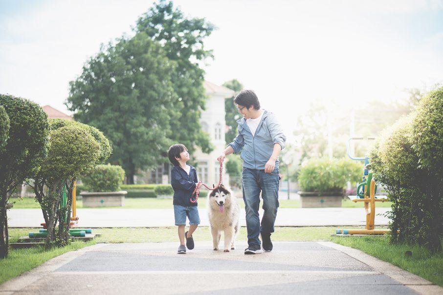 犬を散歩させるパパと息子